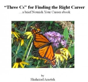 Three Cs ebook cover photo